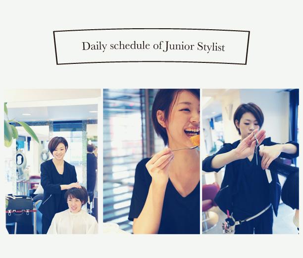 Daily schedule of Junior Stylist